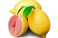 Le citron trou de balle - Photos drôles