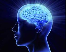 Les secret de la Programmation Neuro-linguistique
